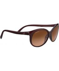 Serengeti 8430 caterina schildpad zonnebril