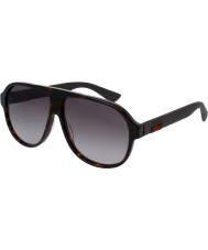 Gucci Mens gg0009s 003 zonnebril