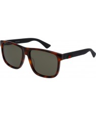 Gucci Mens gg0010s 006 zonnebril