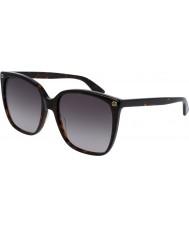 Gucci Ladies gg0022s 003 zonnebril