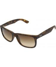 RayBan Rb4165 55 justin rubber licht schildpad 710-13 zonnebril