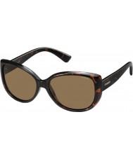 Polaroid Ladies pld4031-s q3v ig donkere havana gepolariseerde zonnebril