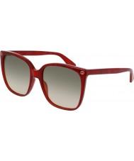 Gucci Ladies gg0022s 006 zonnebril