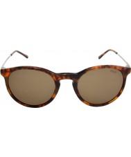 Polo Ralph Lauren Ph4096 50 klassieke flair jerry schildpad 501.773 zonnebrillen