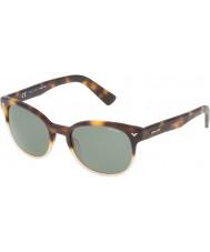 Police Mens meester 4 spl143-0z40 glanzend havana zonnebril