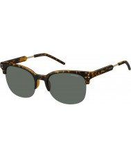 Polaroid Mens pld2031-s nho rc havana goud gepolariseerde zonnebril