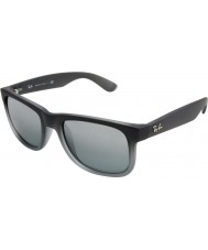 RayBan Rb4165 Justin alles grijs