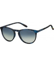Polaroid Pld6003-n sec z7 Havana Blue gepolariseerde zonnebril