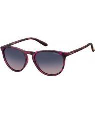 Polaroid Pld6003-n SRR Q2 havana fuchsia gepolariseerde zonnebril
