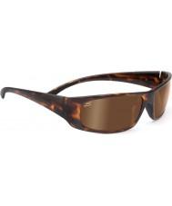 Serengeti Fasano donkere schildpad gepolariseerde phd drivers gouden zonnebril