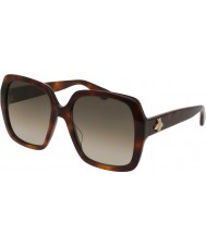 Gucci Dames gg0096s 002 zonnebril
