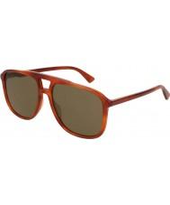 Gucci Gg0262s 002 58 zonnebril voor mannen