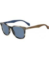 HUGO BOSS Mens boss 0843-s IWF 9a hoorn bruine blauwe zonnebril