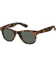 Polaroid Pld6009-ns sog rc havana oranje gepolariseerde zonnebril