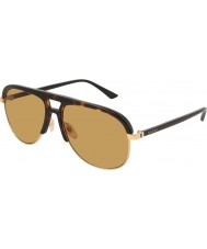 Gucci Heren gg0292s 004 60 zonnebrillen