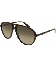 Gucci Mens gg0119s 002 zonnebril