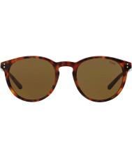 Polo Ralph Lauren Mens ph4110 50 501773 zonnebril