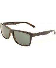 Polo Ralph Lauren Ph4098 57 toevallige woon top zwart op jerry schildpad 526.087 zonnebrillen